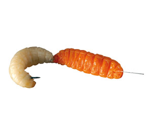 Waxworm and mealworm breeder kits raise your own fishing for Fishing worms near me